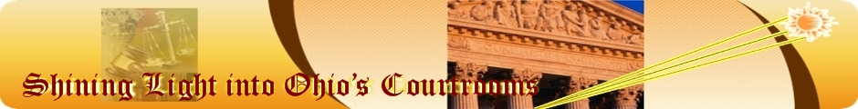 Child Custody Ruling Reports – CourtroomSunshine com